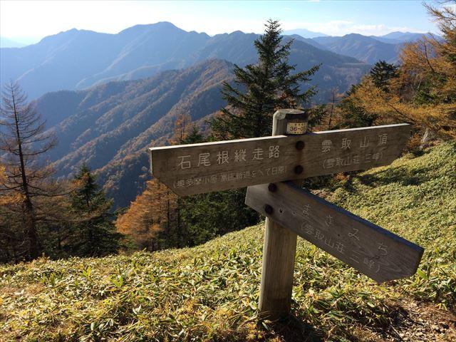 雲取山(鴨沢) 熊さんに出会った旅  日帰り登山(2014.10.25)