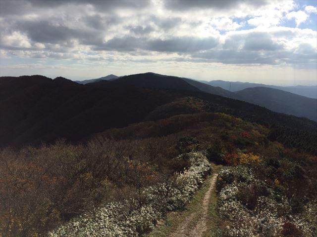 井原山 意外や意外、近場でおすすめできる山  日帰り登山(2014.11.12)