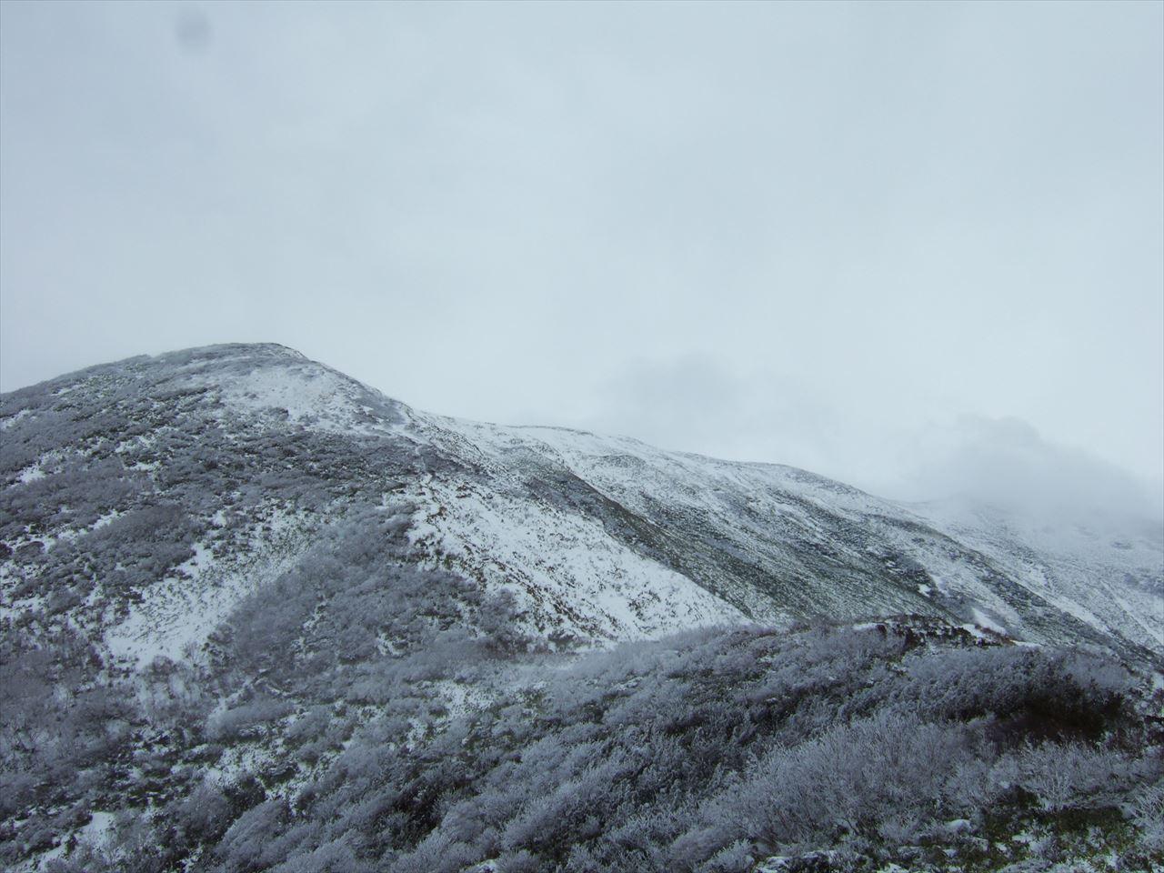 平標山 雪が降る年末 いつもと同じ白い雪にああ撤退 日帰り登山(2015.12.23)