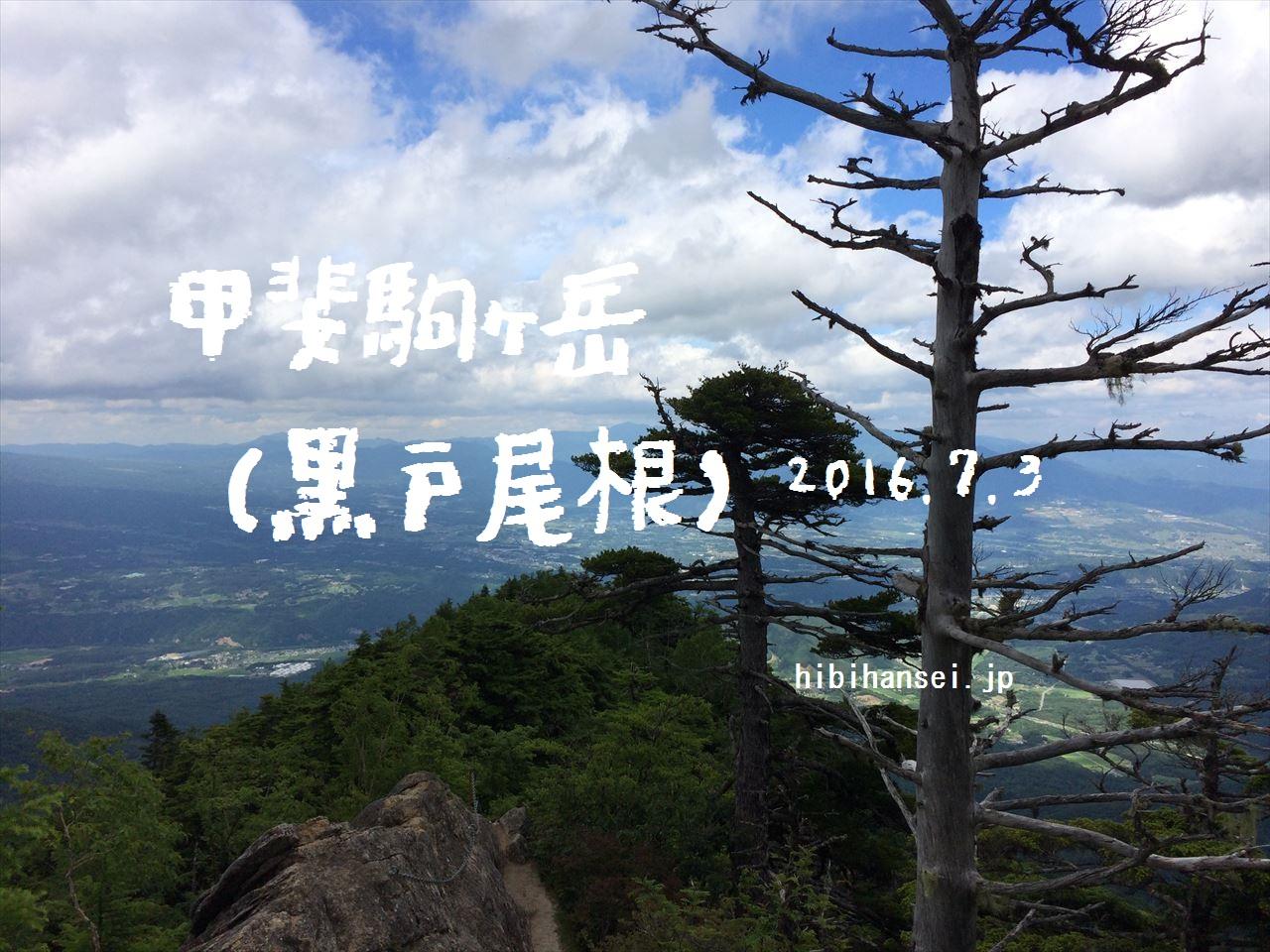 IMG_4525_R アイキャッチ