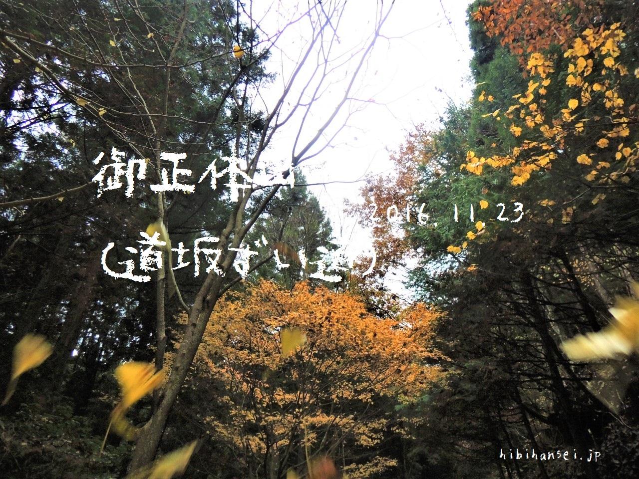 御正体山 登山(道坂ルート) 霧の道志山塊最高峰へ(2016.11.23)