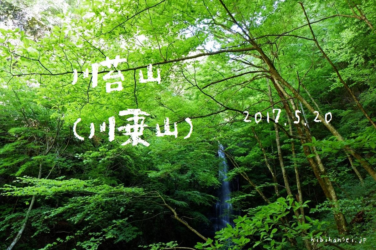 川苔山(川乗山) 登山 百尋の滝と足毛の峰(2017.5.20)