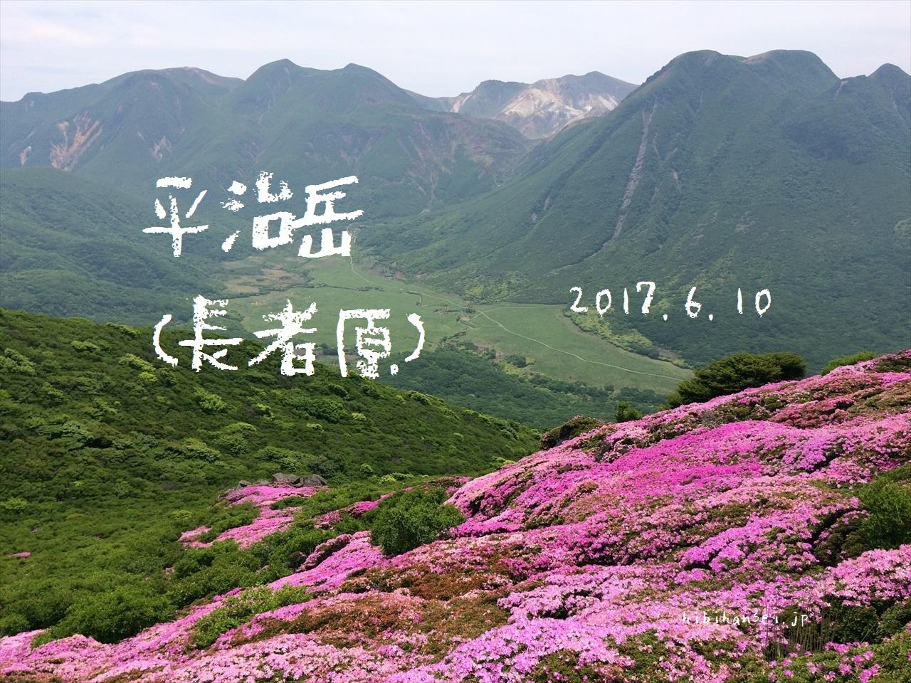 平治岳 花見登山(長者原) ミヤマキリシマ大フィーバー(2017.6.10)