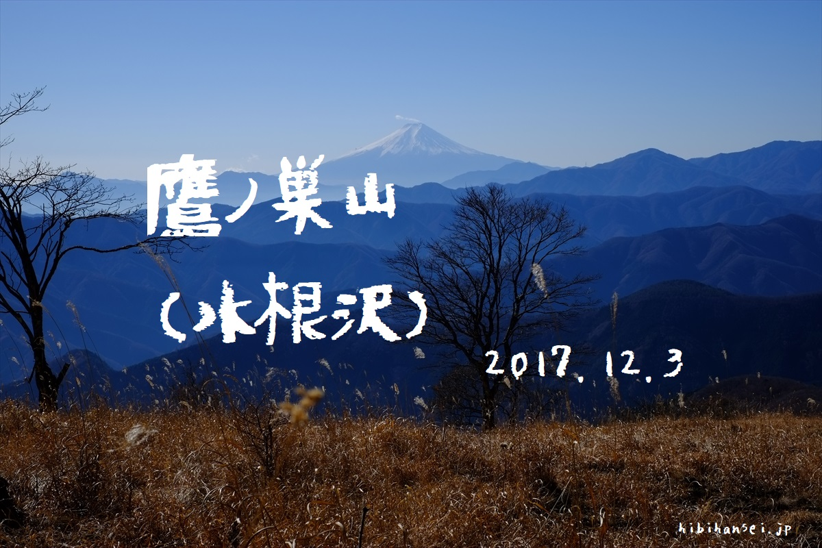 鷹ノ巣山と六ツ石山 登山(水根沢) 山城屋の絶品わさび漬けを食べてくれ!石尾根と富士山と清流の峰