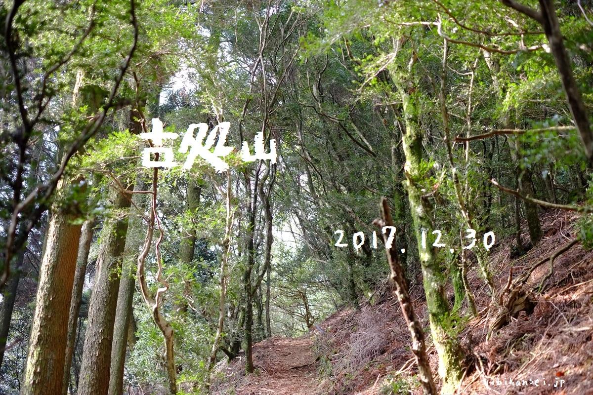 古処山と屏山 登山(秋月キャンプ場) ツゲ原生林の山城と石灰岩の峰