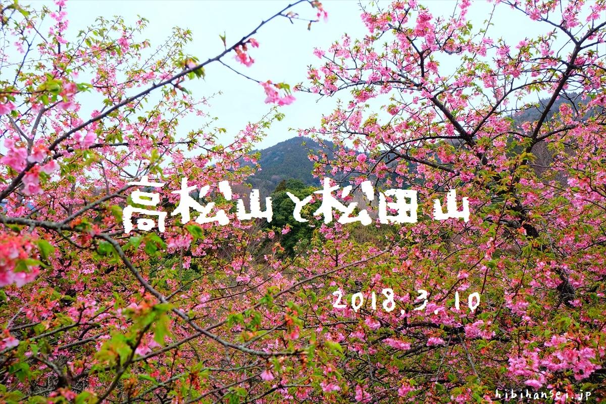 高松山と松田山 登山 丹沢のまつだ桜まつりは桜餅と甘酒の峰