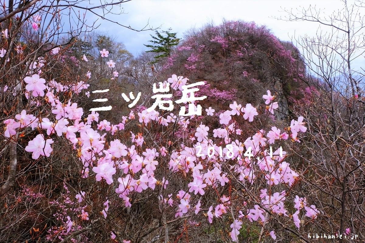 三ツ岩岳(大仁田ダム) 花見登山 満開のひとつばな(アカヤシオ)が埋め尽くす西上州の峰