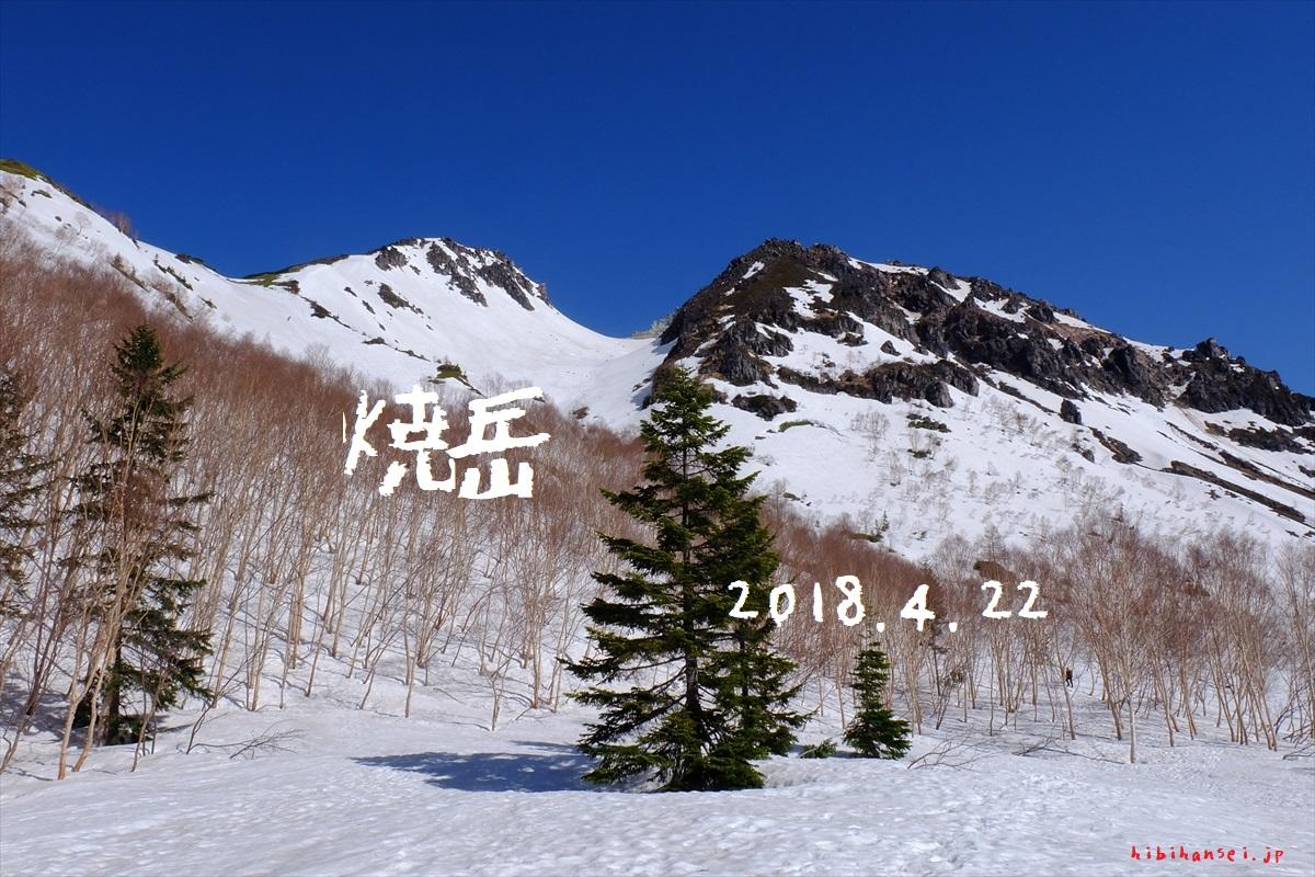 焼岳 雪山登山(新中の湯) 冬毛の雷鳥と見渡す限りの大山脈