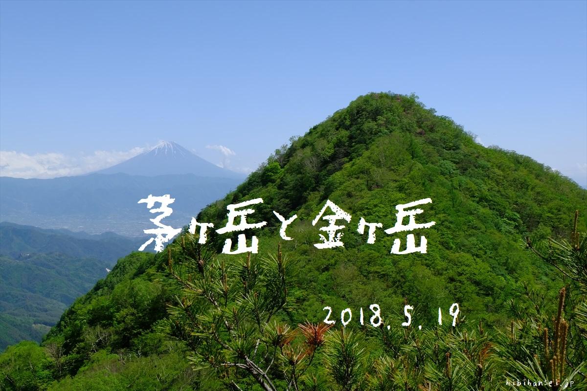茅ヶ岳と金ヶ岳 登山(深田記念公園) 新緑とツツジのトンネルを抜け季節の巡りに癒される峰