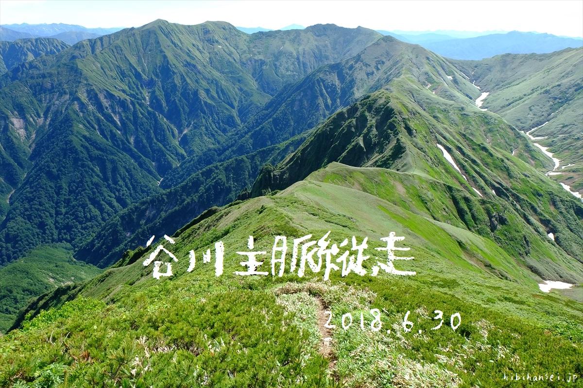 谷川主脈縦走(谷川岳~万太郎山~仙ノ倉山~平標山) 暑く長い国境稜線は強風の峰 日帰り登山