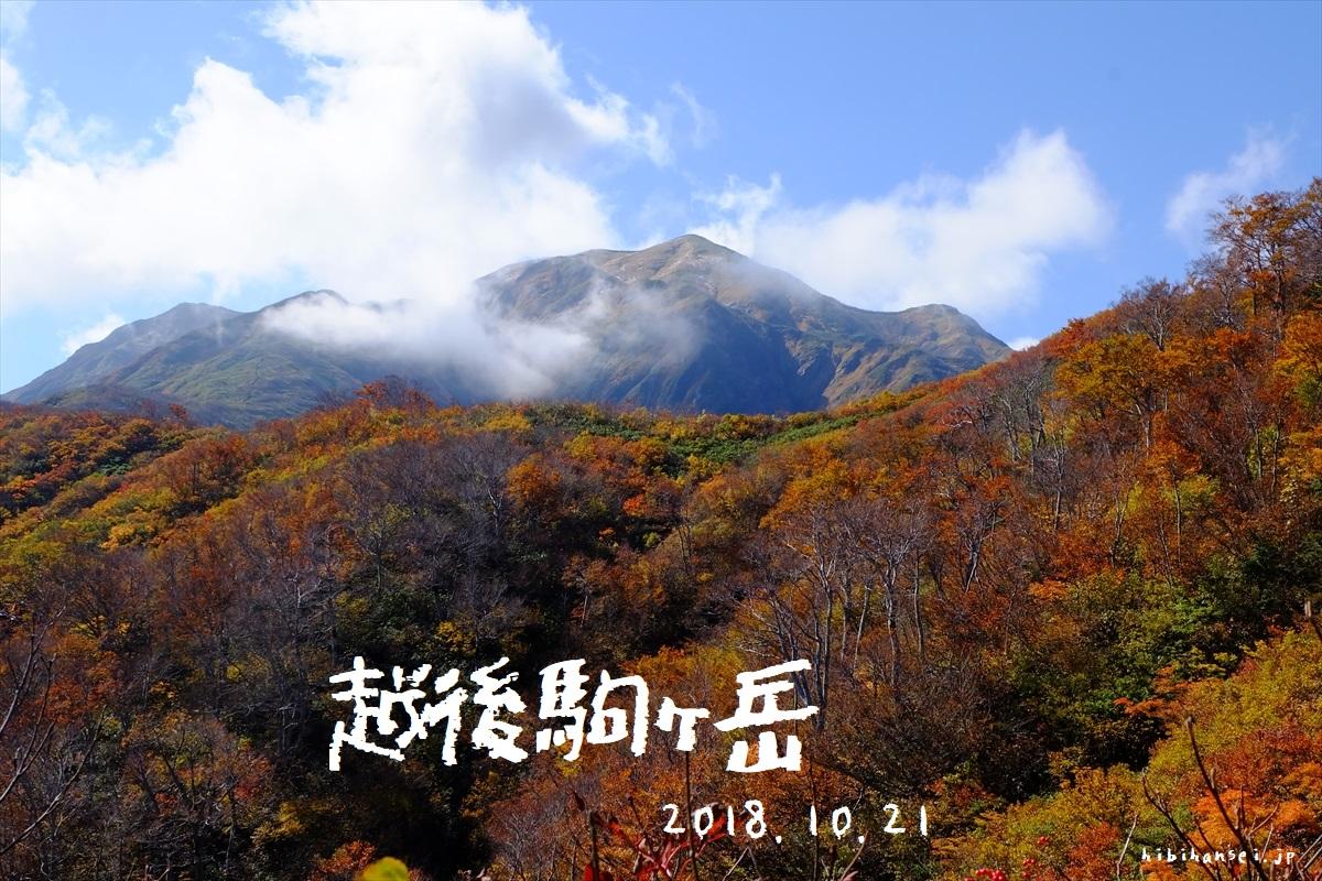 越後駒ヶ岳 紅葉登山(枝折峠) 秋にお薦め!大展望の稜線歩きと山頂からの大観