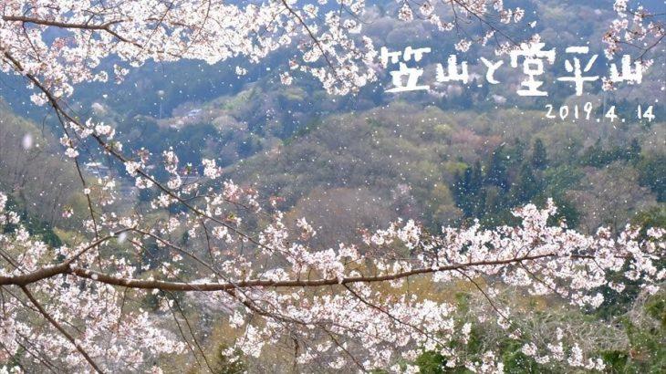 堂平山と笠山 登山 虎山の弐千本桜と花盛りの秩父は春爛漫の峰