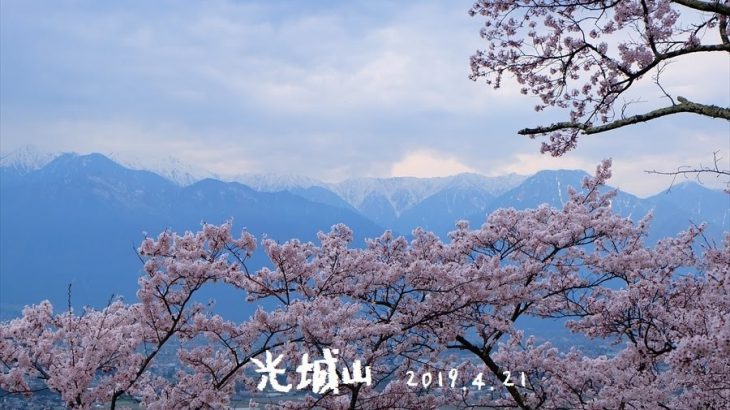 光城山 登山 桜の登山道を登る!安曇野の春の風物詩は北アルプスの大絶景