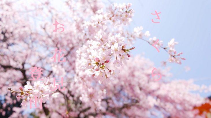 【登山かわら版】桜の花見登山ができる山を紹介するぜ!春に登りたい定番の山はここだ!編