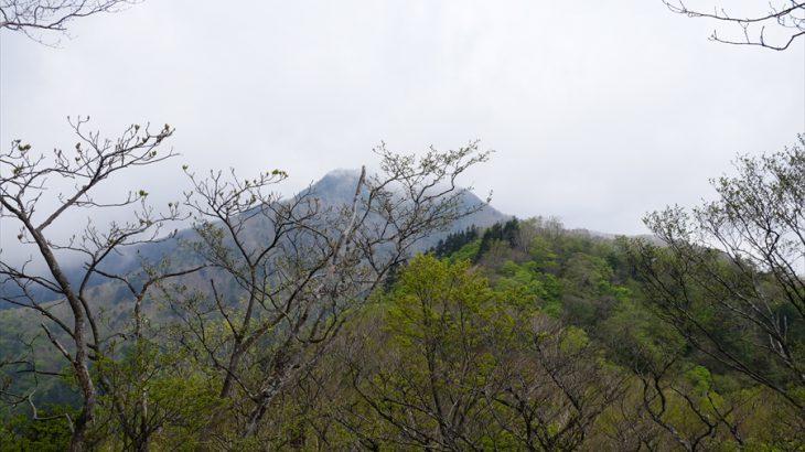 高原山(釈迦ヶ岳) 登山 律儀に登れ!ツツジのハズレ年にガスまみれの山頂 高原シリーズ最終章