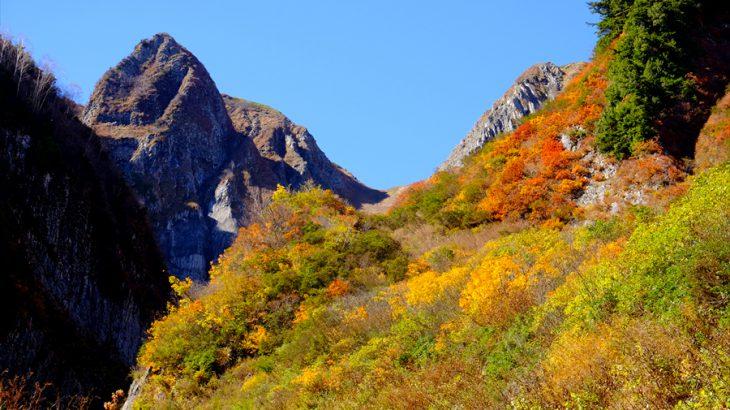 雨飾山 紅葉登山(雨飾高原キャンプ場) 霧氷と紅葉のコラボ! 今年最初の雪の華に震えた峰