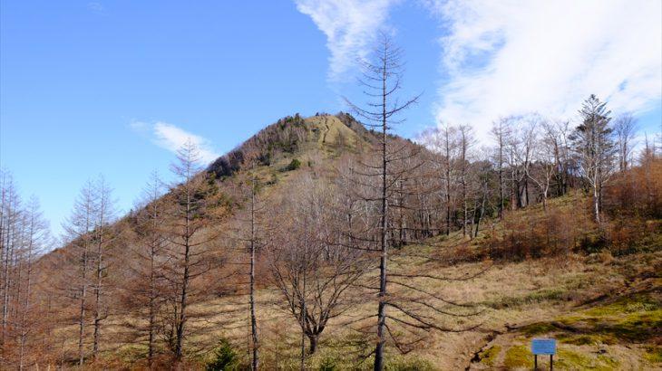 笠取山 登山(作場平橋) 食い気も景色も厚み2倍!多摩川の源流を巡る絶景とヤスデの峰